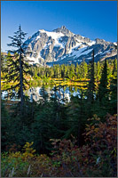 mt. shuksan reflected in picture lake