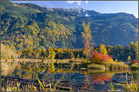 photo of mount archibald and cheam lake fall colours