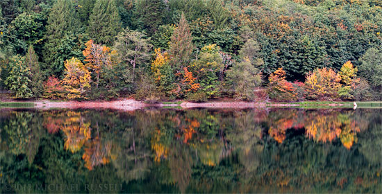 maple trees reflecting in silver lake in silver lake provincial park