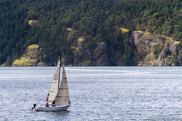 sailboat in burgoyne bay at burgoyne bay provincial park on salt spring island