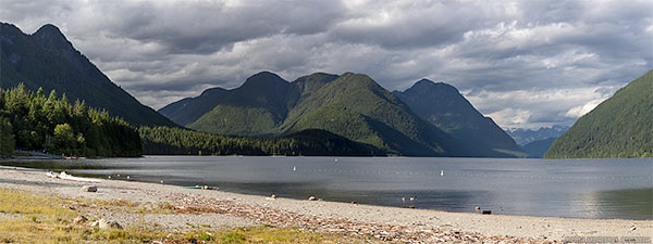 beach and swimming area at alouette lake in golden ears park