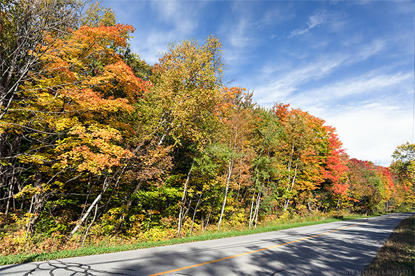 roadside fall color in gatineau park