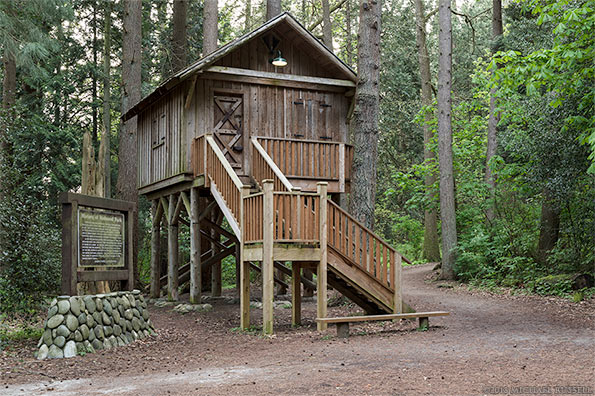 treehouse at redwood park in surrey bc