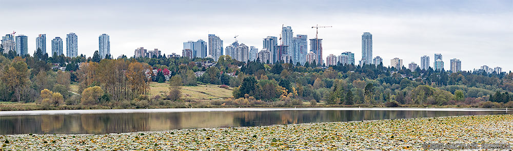 burnaby skyline above deer lake park