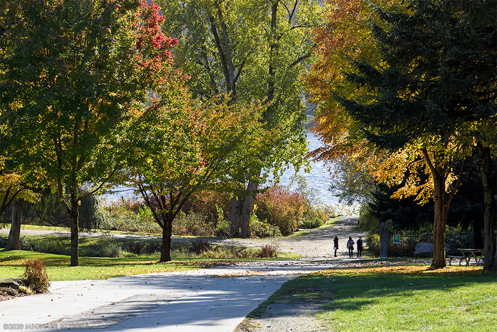 autumn leaves over a path down to the lake at deer lake park