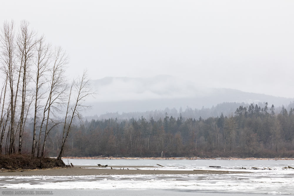 ice along the fraser river in glen valley