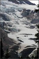 nisqually glacier on mt rainier