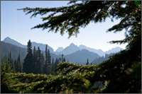 tatoosh range from paradise valley