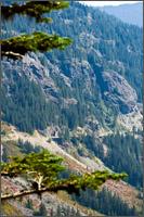 stevens canyon road