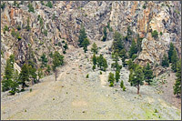talus slope on sportsmans slide in keremeos bc