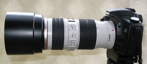 canon ef 70-200 f/4l is with caon et-74 hood