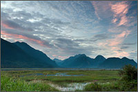 sunset at the pitt river/addington marsh