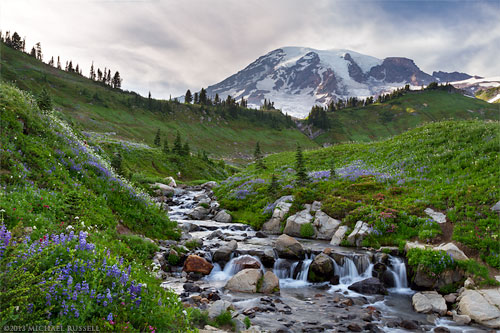 mount rainier and edith creek in mount rainier national park
