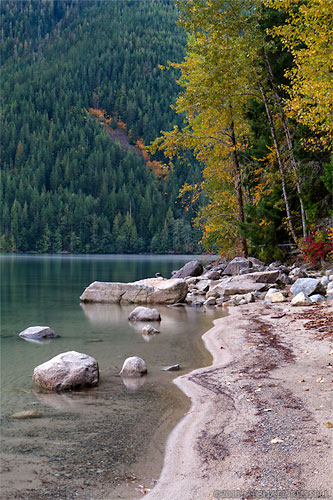 fall foliage along shore of chilliwack lake in chilliwack lake provincial park