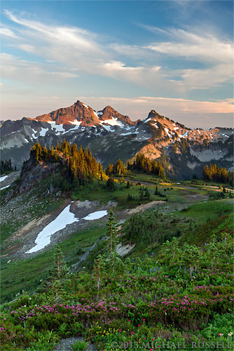 sunset at the tatoosh range on mazama ridge in rainier national park