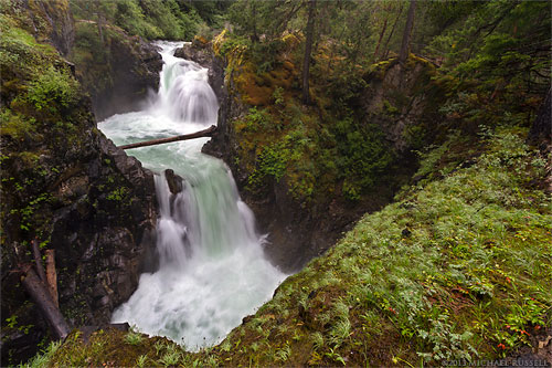 upper little qualicum falls in spring