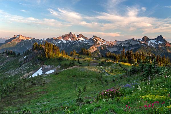 Wildflowers and the Tatoosh Range from Mazama Ridge's Skyline Trail in Mount Rainier National Park