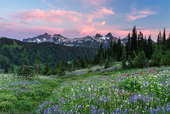 sunset over the tatoosh range in mount rainier national park