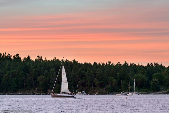 sunset sailboat in nanaimo harbour
