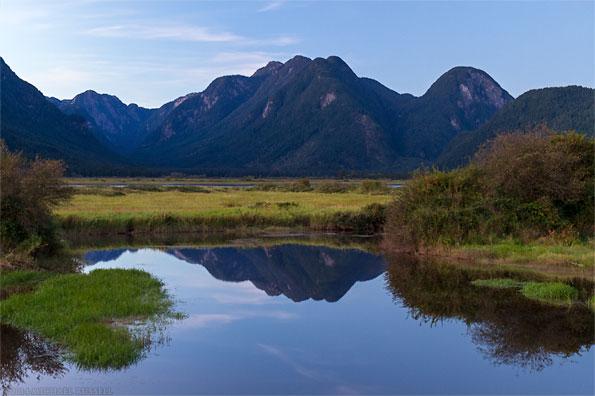 coast mountains reflected in pitt marsh