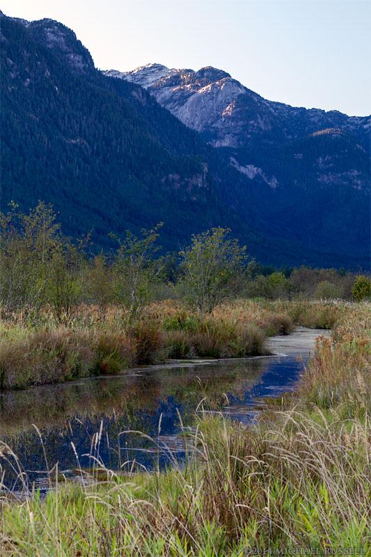 widgeon peak reflected in pitt marsh