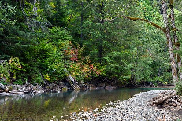 ohanapecosh river fall foliage colors in mount rainier national park