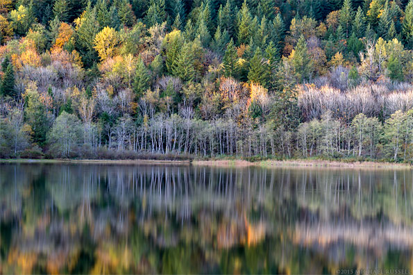 fall foliage at deer lake in sasquatch provincial park