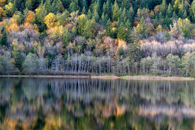 fall foliage colours reflecting on deer lake