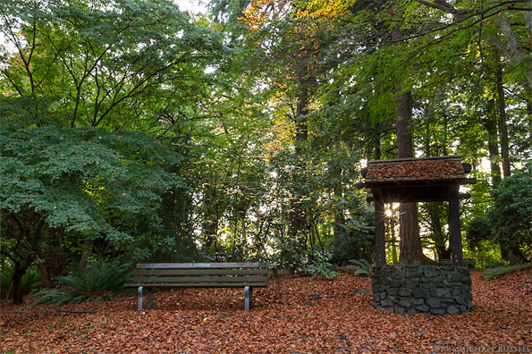wishing well and bench at air force garden of remembrance in vancouvers stanley park