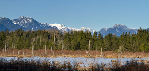 langley bog viewing platform and the coast mountains from derby reach regional park