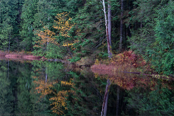 fall foilage on mill pond in mission bc silverdale