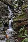 mini cascadefalls