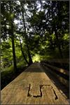 cascadefallsbridge